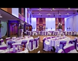 ATP Dining Room Purple
