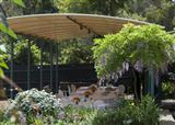 Royal Botanical Gardens Wisteria