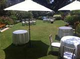 Royal Botanical Garden Tables