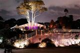 Royal Botanical Gardens night