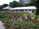 Royal Botanical Gardens Flowers